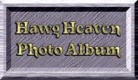 The Hawg Heaven Photo Gallery